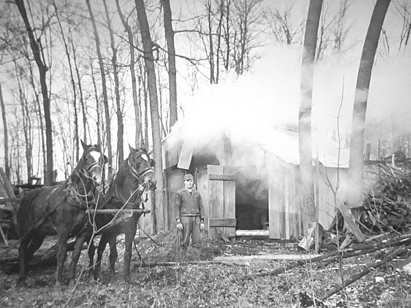 The sugar shack 1949: Al Morgan gathers sap in the spring of 1949 on a farm west of Warwick Village, near Watford, in Lambton County. Many people still used horses to haul sap to a shelter and boil it over a wood fire. These post-war days were filled with optimism. In this year, clothes rationing would end in Britain. Few people had black and white televisions, but radio was popular and songs of the day included All I want for Christmas is my two front teeth, Some Enchanted Evening and Diamonds are a Girl's Best Friend. (Photo provided by Nancy Morgan of Watford, Ont.)