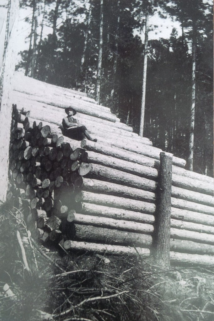 Best of times, worst of times In 1930, logs were harvested and piled during the winter and released into the Madawaska River in the spring, west of Arnprior in Renfrew County. These were the early days of the Great Depression. By 1933, 30 per cent of the country's labour force was out of work. Farmers who stayed on the farm were not considered unemployed. Canada's economy was starting to shift away from farming, fishing and logging to manufacturing. (Photo provided by Kirk Young, of Arnprior, ON)