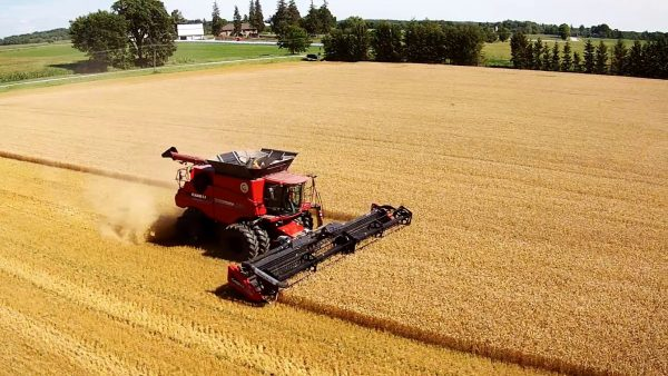 Why drones are awesome — Claussens harvest winter wheat