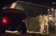 American farmers' suicide rates rise as incomes plummets