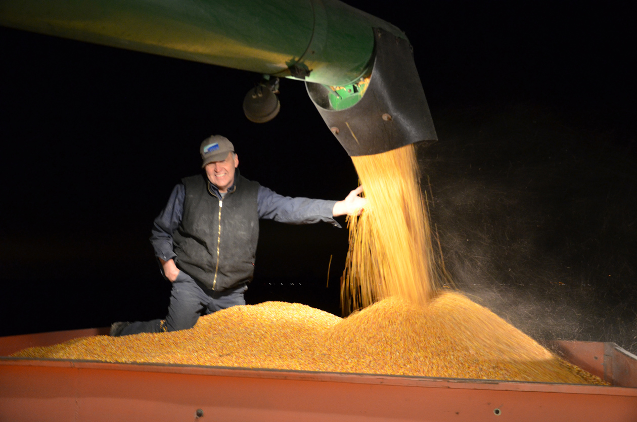 Expect U.S. bumper corn crop