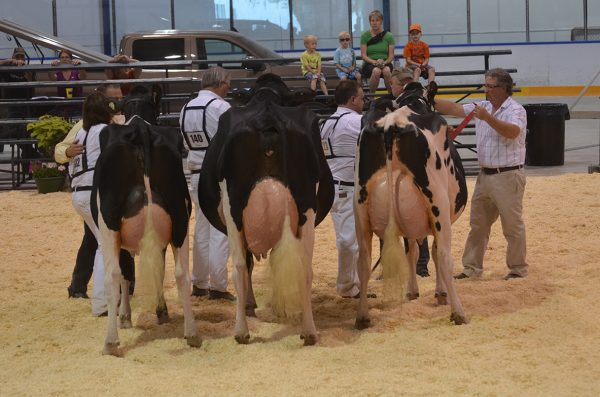 Maxville show
