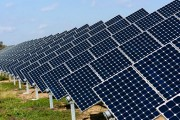 Solar farm opponents call on province to stop Port Hope construction