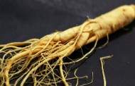 April snow dump damages some ginseng and asparagus