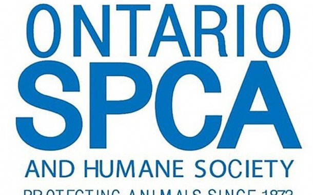 9ff4537aa94f82 Animal rights groups say province should take over OSPCA s role