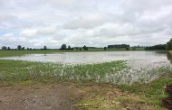 Farmer lost 40 acres to flooding