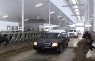 WESTERN ONTARIO: Deceased dairy farmer takes one last trip through rebuilt barn