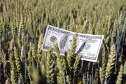 Wall Street bailing on American farmers: ag loans down by almost $4 billion since 2015