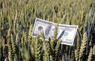 Ontario records strong farm cash receipts in first quarter