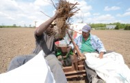 Proposed temp. foreign worker changes surprise ag industry
