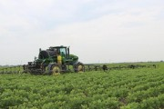 GLYPHOSATE: Does new study prove anything?