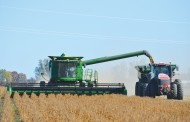 Ontario soybeans poised for record yields: StatCan