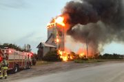 WESTERN ONTARIO: Cattle rescued from Essex County barn fire