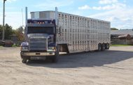 New rules for transporting livestock kick in Feb. 1