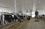 Middlesex County dairy farmer upends the farm and heads to Eastern Ontario