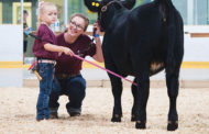 EASTERN ONTARIO: How to win a show without showing a cow