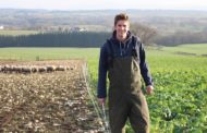 Are young farmers the new starving artists?