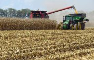 U.S. grower hits 600 bu/ac in corn yield contest