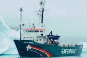 Greenpeace suing Ontario for cancelling cap-and-trade