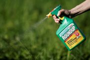 Saskatchewan farmer leading class-action lawsuit against Bayer and Monsanto, blaming Roundup for his cancer