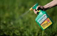 Canadian class-action lawsuits launched over Roundup
