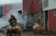 EASTERN ONTARIO: Quinte West barn fire destroys 1,200 hogs; firefighters save 160