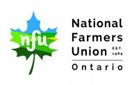 Biggest 2019 issues for NFU-O, CFFO: Engage the next generation and remove red tape