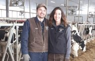 Western Ontario's best-managed herd: Stick with what works and keep the plan simple, farmer says