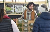 EASTERN ONTARIO: Urban farm grows 4-inch crop
