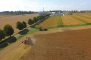 Ontario farmland value growth slowed to a crawl in the past six months: FCC