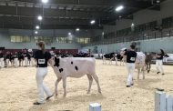 WESTERN ONTARIO: EastGen winner had no hesitation choosing heifer
