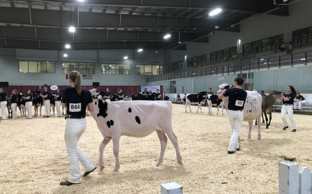 WESTERN ONTARIO: EastGen winner had no hesitation choosing heifer