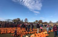 Peterborough farm family of 2019 brought 13,000 out to annual pumpkin fest