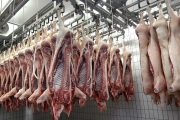 Quebec hog slaughterhouse Olymel closing for 14 days after nine employees confirmed infected with covid-19