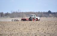 55 % of grain farmers fear they can't cover production costs: GFO survey
