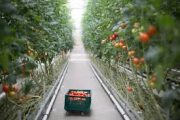 OFA: Feds, province chip in $396,000 to attract, recruit and train agri-food workers in OFA project