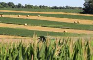 Quebec farmers push up Eastern Ontario farmland prices: FCC
