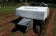 Robot weeder hopes to replace foreign workers