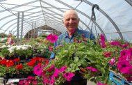 EASTERN ONTARIO: Market gardens, some tree farms see demand boom