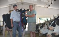 Cow, embryo sales down: Cancelled shows make it worse
