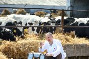 Ontario offering over $2 million to boost livestock research