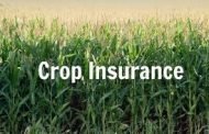 WESTERN ONTARIO: Crop insurance claims way down
