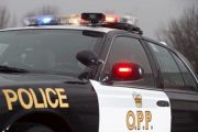 84-year-old dies in farming accident, struck by falling tree while riding tractor in Peterborough County