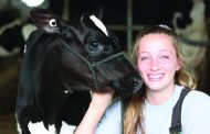 THE 4-H SHOW MUST GO ON: More than 100 shows reduced to about 35 this year