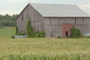 Counties cannot order barn tear downs; provincial rules prevail
