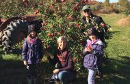 EASTERN ONTARIO: One of best years ever for apples