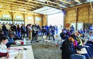 In-person beef sale surprises with more than 200 attendees
