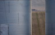 FCC: How to strategize on grain storage