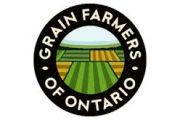 SIGN UP: Grain Farmers of Ontario district meetings by Zoom in January