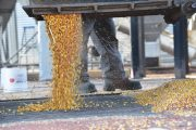 GFO contributes $200K to Ridgetown campus crop research
